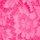 roza Č 158-4